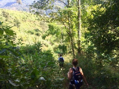 Heading back into the jungle for day two