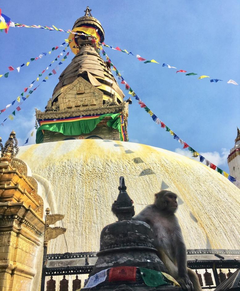 monkey-temple.jpg