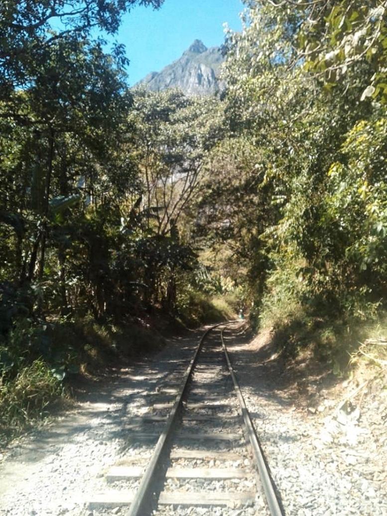Day 4 Train Tracks